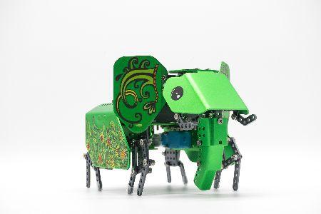 "Robobloq MINT Roboter ""Q-elephant"" ab 10 Jahren"