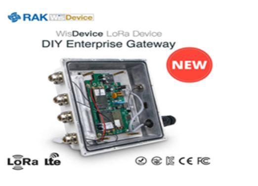 RAK Wireless DIY LoRaWan Outdoor Gateway RAK7249-03 LORA 8 Kanäle 868MHz